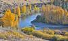 Fall leaves, Yakima River