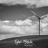 8  G Windmill BW