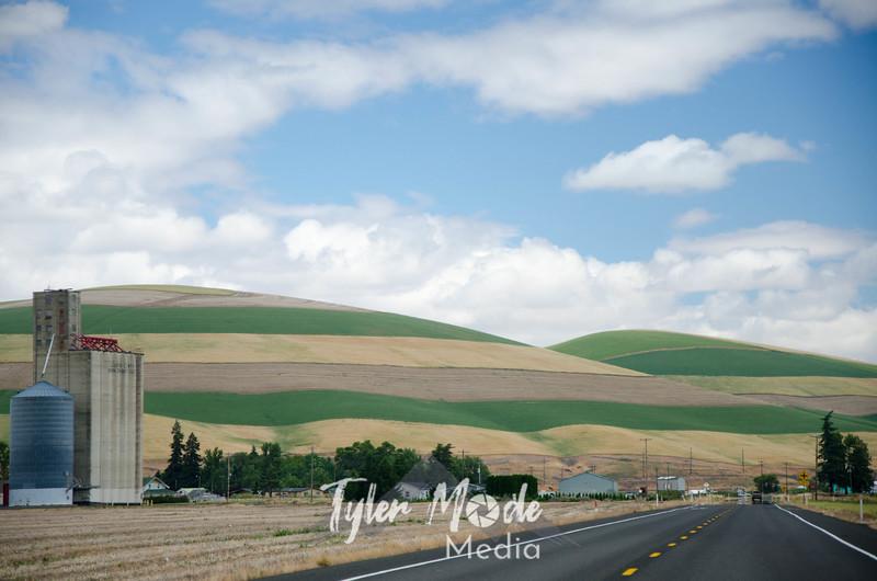 3  G Striped Hillside