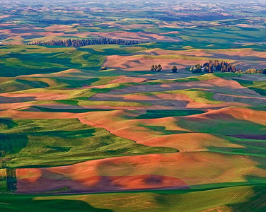 """Steptoe Sunrise"" A fiery red sunrise, the product of many harvesters' dust plumes, washes the rolling hills of the Palouse as seen from Steptoe Butte."