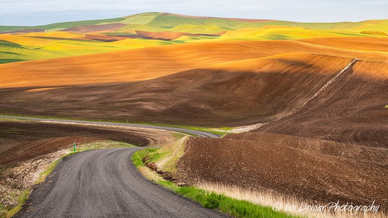 Spring colors in the Palouse