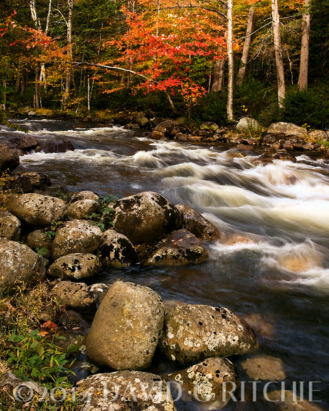 Fall colors in Adirondack State Park, NY.