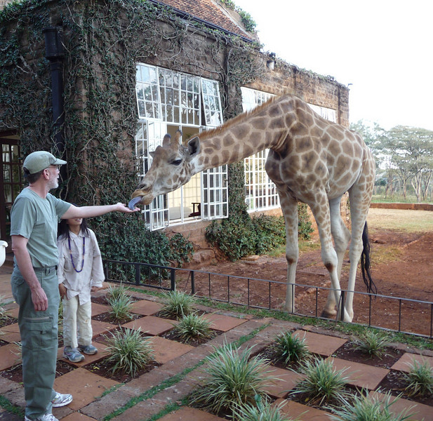 Fun for everyone.  Giraffe Manor is a MUST STAY place in the Nairobi suburb of Karen.