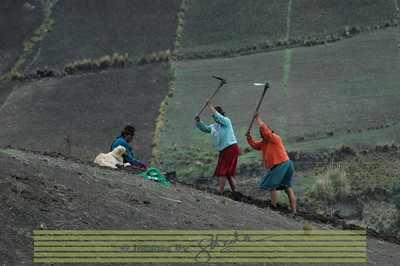 Farmers On the way to South of Quito