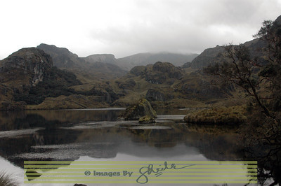 Cajas, The Southern Highlands Well over 200 pools, puddles and ponds.