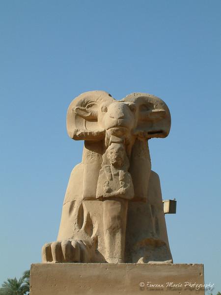 Egypte (70)