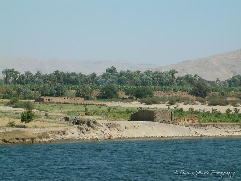 Egypte (125)
