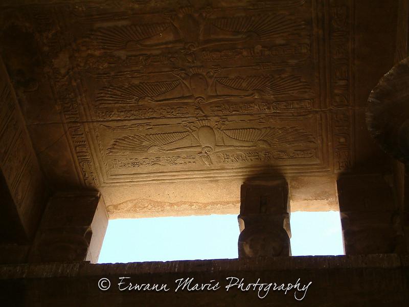 Egypte (481)