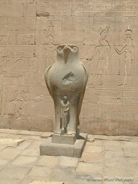 Egypte (272)