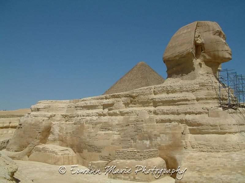 Egypte (950)