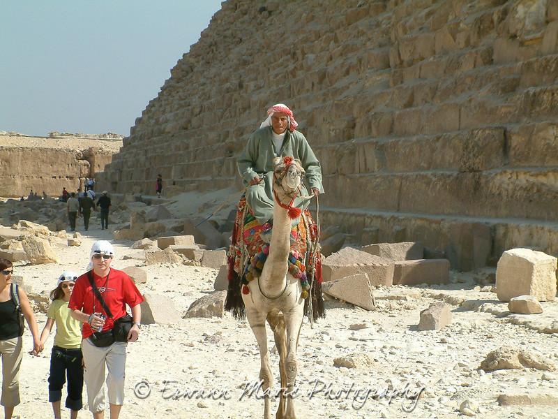 Egypte (879)