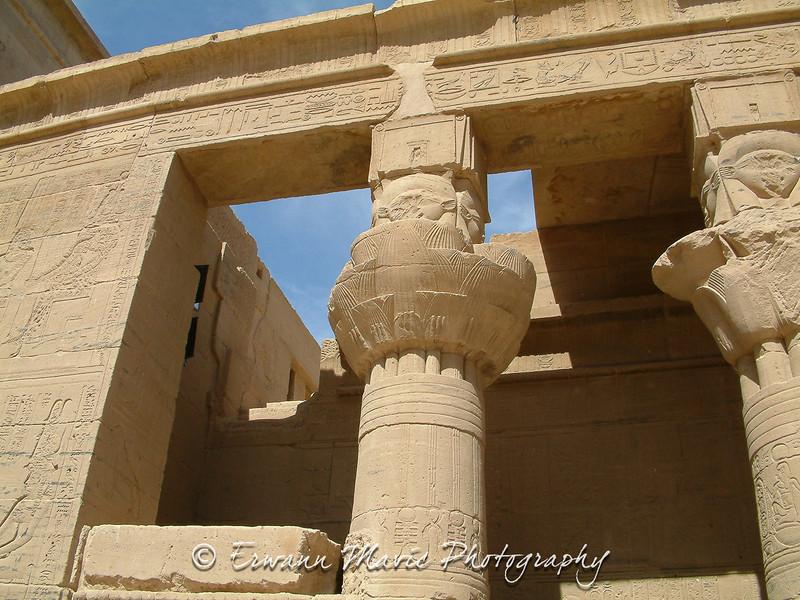 Egypte (486)