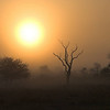 Kruger Park sunrise