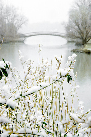 "#61 Looking east through grasses in the flower boxes on the east side of the car bridge after a light snow (1996).  *For information on purchasing prints and canvas gallery wraps, click the ""Purchasing"" tab at the top of the page. If viewing on your mobile device, scroll to the bottom of the page and click the ""Full Site"" tab to view as if you were on your home PC and then go to the ""Purchase"" tab to for purchasing info. In mobile mode, you will not see the standard navigation bar with the ""Purchase"" tab."