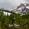 221  G Mt  Hood and Trees