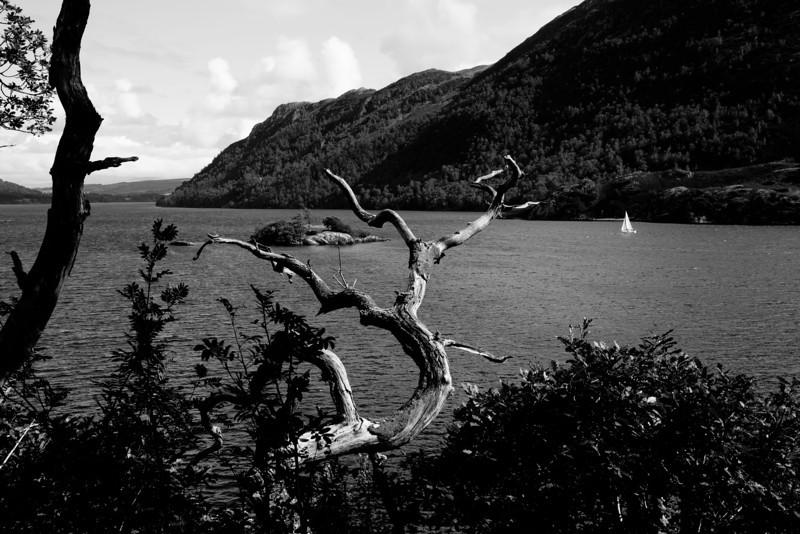 Lake District - Lake Windermere, England Black & White study