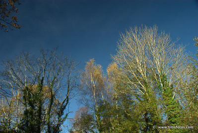Enniskerry 08 Nov 12