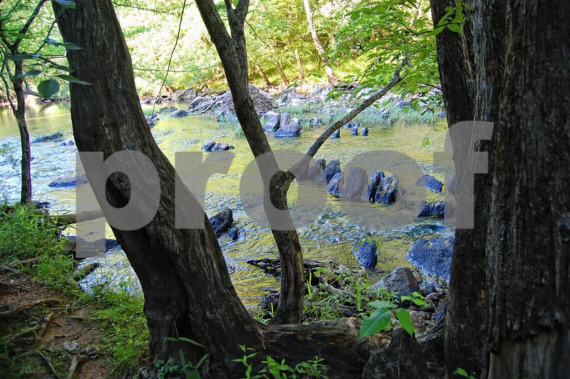 DSC_2278 Strand Eno Toothy Rocks w Trees 300dpi 12x18 wm