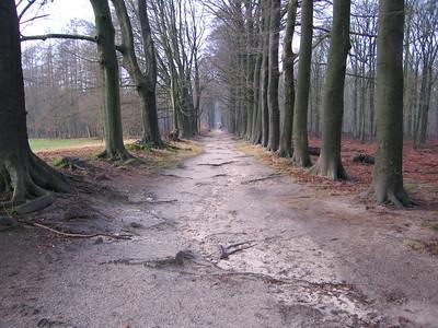 NS wandeling Laag Soeren 20 km