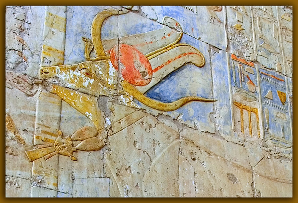Hathor Wall relief at Hatshepsut's Temple. Tthis relief of the cow guise with the Hathor necklace is particularly interesting.