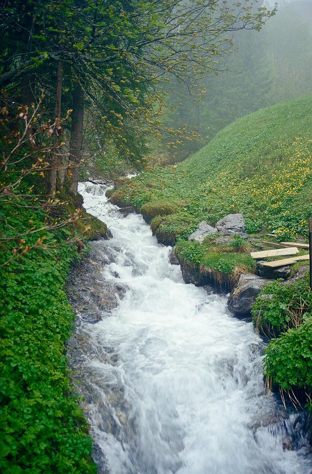 Jungfrau runoff, CH