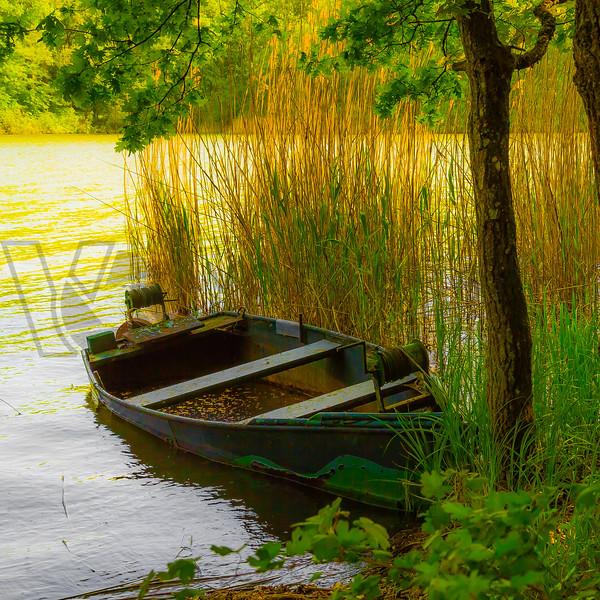 Half-Sunken Lake Boat, Lorraine, France