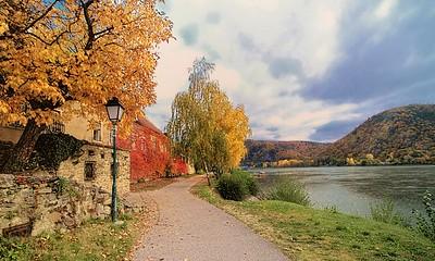 Autumn along the Danube