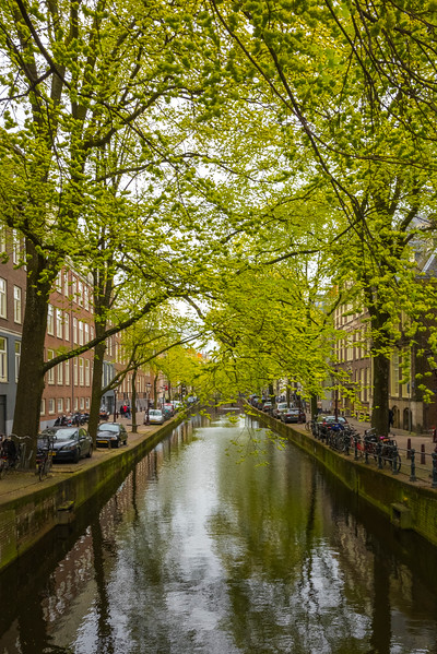 Spring Lies Over The Canals