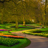 Winding Paths Of Keukenhof Gardens