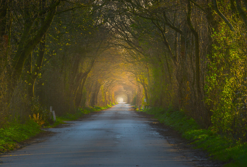 Tunnel Of Light In North Holland_30x20