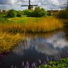 Idyllic Rural Holland Scene