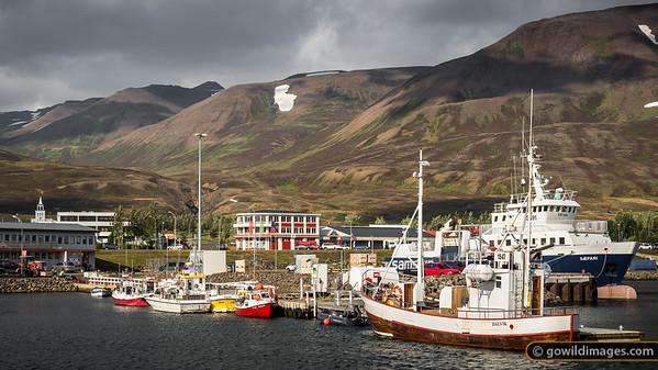 Dalvík harbour