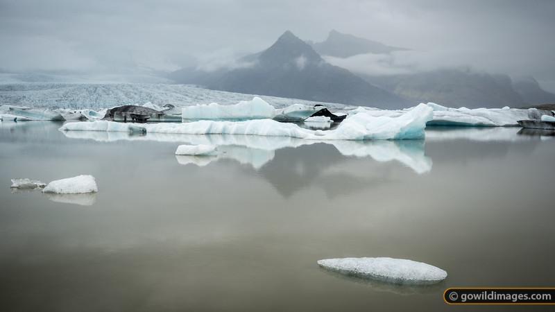 Fjallsjökull glacier breaks off into Fjallsárlón lake. The floating icebergs then flow down a river to the Atlantic Ocean