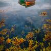 Seeing The Bottom Of The Lake - Connemara Loop, County Galway, Ireland