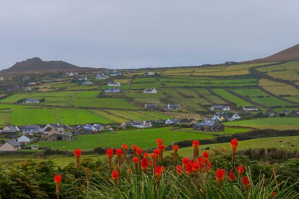 The Houses Alongside The Hill - The Dingle Peninsula, County Kerry, Ireland