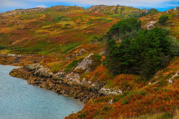 Layers Of Autumn Around The Lake - Connemara Loop, County Galway, Ireland