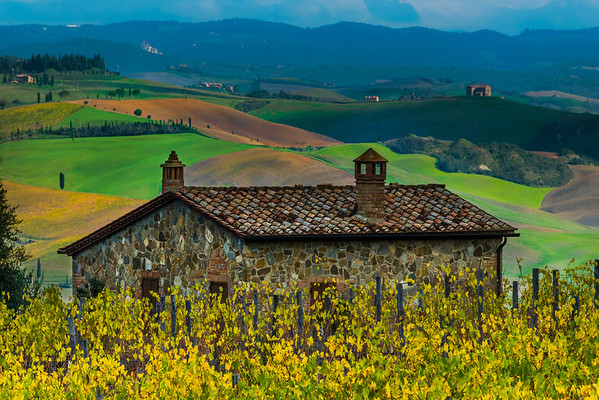 Nestled At The Top Of The Hill - Val d'Orcia Region, Tuscany, Italy