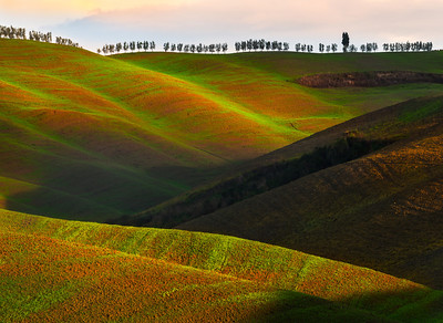 The Rolling Hills Of Velvet - Val d'Orcia Region, Tuscany, Italy