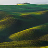 Making Your Way To The Top - Val d'Orcia Region, Tuscany, Italy