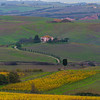 The Pathway To Home - Val d'Orcia Region, Tuscany, Italy