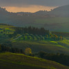 Hillside Patterns - Val d'Orcia Region, Tuscany, Italy