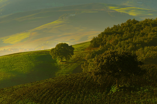 Rolling Hills Of First Light - Val d'Orcia Region, Tuscany, Italy