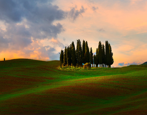 A Shiver Of Light Against Sunset - Val d'Orcia Region, Tuscany, Italy