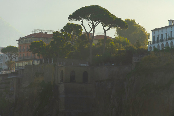 Morning Light With The Clifftop Trees Sorrento, Italy