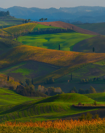 The Rolling Shades Of Spring And Autumn - Val d'Orcia Region, Tuscany, Italy