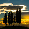 A Moment Of Silence - Val d'Orcia Region, Tuscany, Italy