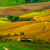 Brilliant Colors Of Tuscany - Val d'Orcia Region, Tuscany, Italy