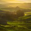 A Misty Morning In Tuscany - Val d'Orcia Region, Tuscany, Italy