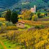 Old Remnants Tuscany - Val d'Orcia Region, Tuscany, Italy