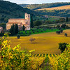 In All Its Autumn Glory - Val d'Orcia Region, Tuscany, Italy